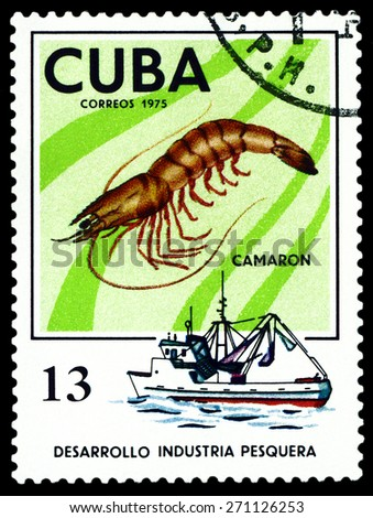 CUBA - CIRCA 1975: a stamp printed by Cuba  show the  Prawn, series Fishing Industry, circa 1975 - stock photo