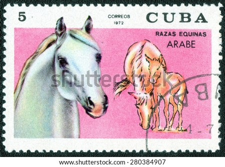 "Cuba - CIRCA 1972: a stamp printed by Cuba shows a series of images ""Horse Breeds"", circa 1972 - stock photo"