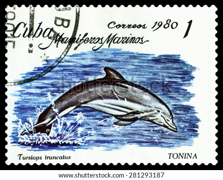 CUBA - CIRCA 1980: a stamp printed by Cuba shows  Bottlenose dolphin.,  Marine  Mammals,  circa 1980 - stock photo