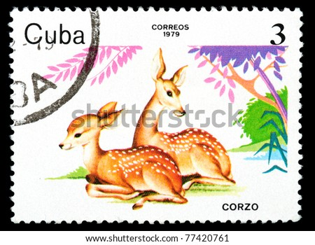 CUBA - CIRCA 1979: A stamp printed by Cuban Post shows Corzo, circa 1979 - stock photo