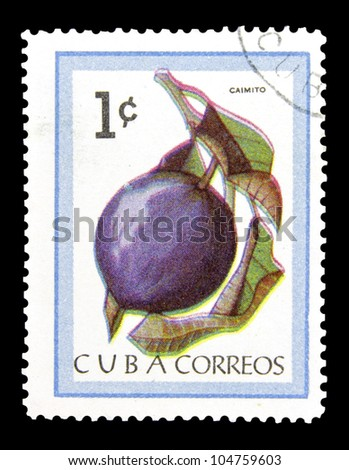 """CUBA - CIRCA 1963: A stamp printed in Cuba shows Star apple with the inscription """"Caimito (Chrysophyllum cainito)"""", from the series """"Fruit"""", circa 1963 - stock photo"""