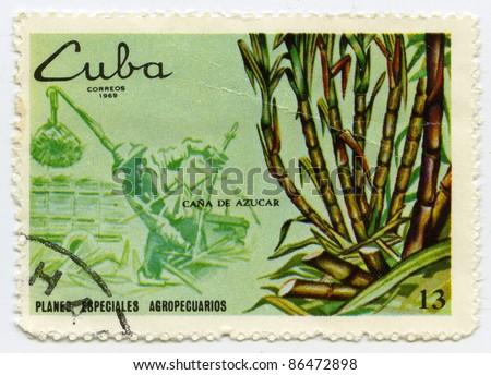 CUBA - CIRCA 1969: A stamp printed in Cuba, shows sugarcane, circa 1969 - stock photo