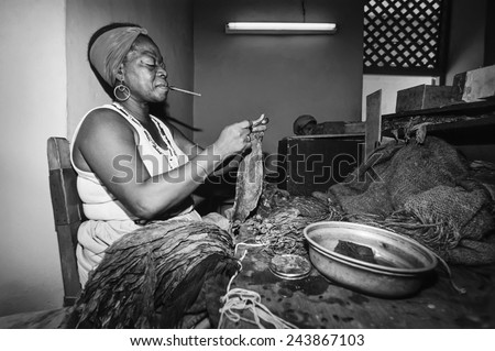CUBA, Pinar Del Rio, cuban woman working in a cigars factory - FILM SCAN - stock photo