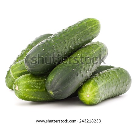 Cucumber vegetable  isolated on white background cutout - stock photo