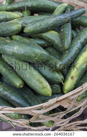 cucumbers in basket on market - stock photo