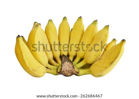 cultivated banana isolated on white background - stock photo