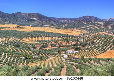 Cultivated fields in Spain, La Mancha - stock photo