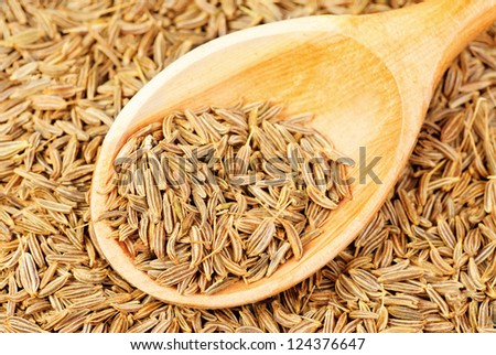 cumin seeds macro and  wooden spoon as background - stock photo