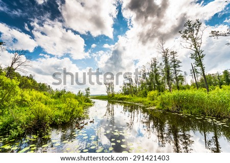 Cumulus clouds over the forest lake where ducks - stock photo