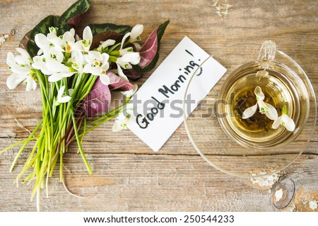 cup of green tea and spring white snowdrop flowers, rustic still life - stock photo