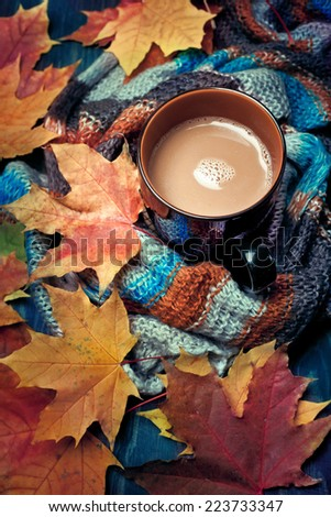 Cup of warming coffee or chocolate set with autumn leaves and a warm scarf - stock photo