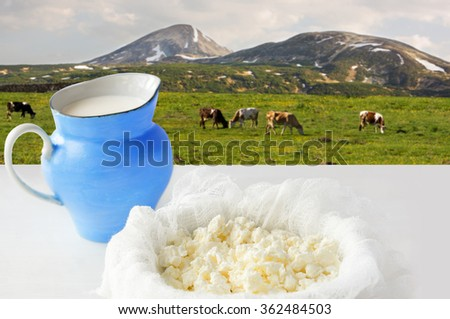 curd cheese and milk overlooking a meadow with grazing cows. - stock photo