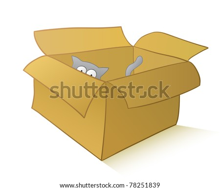 Curious cat playing in a carton box isolated on white - stock photo