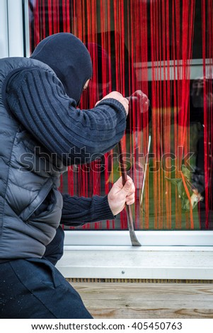 Curious dog looking for thief - stock photo