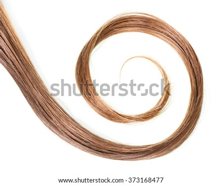 Curl brown natural hair isolated on white background - stock photo