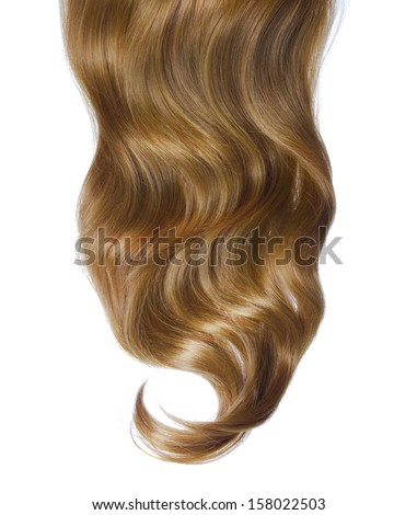 curly brown hair over white background - stock photo