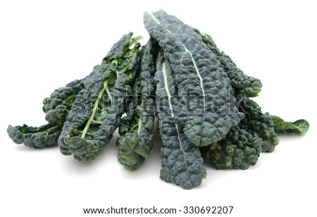 Curly Kale or Tuscan Kale - stock photo
