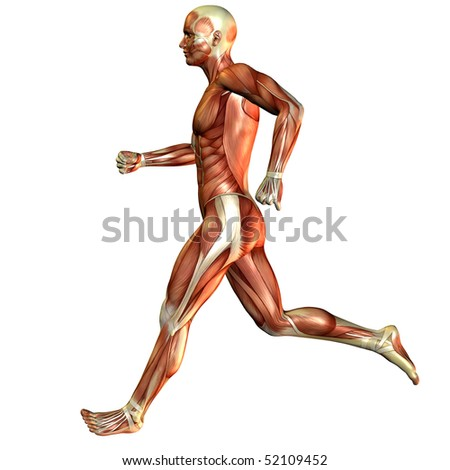 Current study, muscle man - stock photo