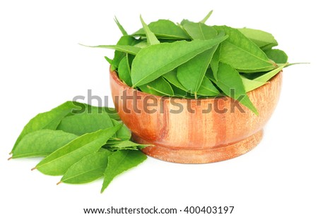 Curry Leaves in a wooden bowl over white background - stock photo