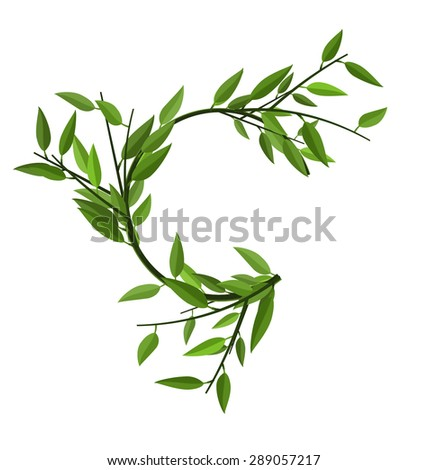Curved Round Branch Bamboo with Green Leaves with Space for Text - raster - stock photo
