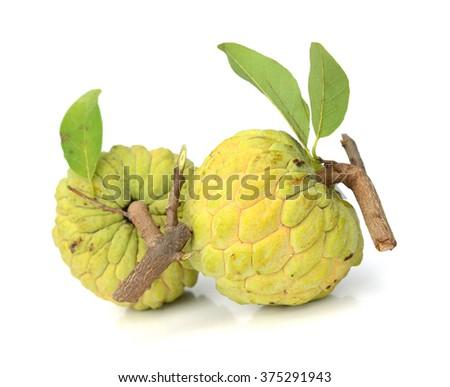 Custard apple isolated in white background - stock photo
