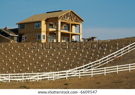 Custom country Home Site on a Hill with Citrus Tree Sprouts and White Fence. - stock photo