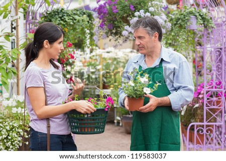 Customer talking to garden center worker about potted plants - stock photo