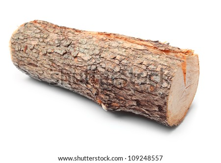 Cut log fire wood from Common Oak tree (Quercus robur). Renewable resource of a energy. Environmental concept. - stock photo