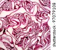 Cut red cabbage - stock photo