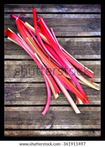 Cut Rhubarb - stock photo