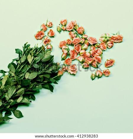 Cut Roses. Fashion. Details Minimalism. - stock photo