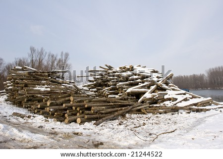 cut timber logs on bank of river in winter - stock photo
