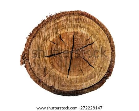 cut wood texture - stock photo