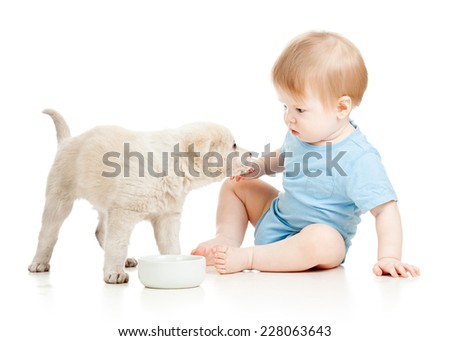 cute baby boy looking at puppy isolated - stock photo