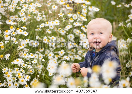 Cute baby boy with flowers sitting in chamomile field. Toddler boy in wild flowers meadow. Smiling child sitting on the daisy field. - stock photo