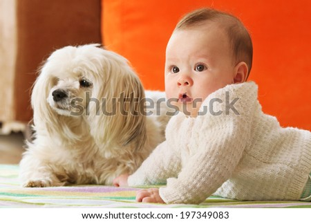 Cute Baby Girl and her Dog in Narrow Focus - stock photo