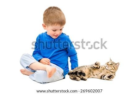 Cute boy playing with a cat Scottish Straight isolated on white background - stock photo