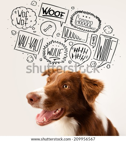 Cute brown and white border collie with barking speech bubbles above his head - stock photo