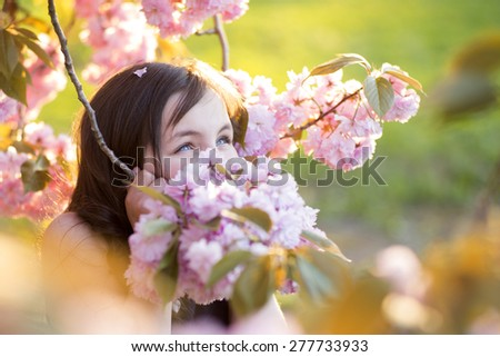 Cute brunette girl looking away standing amid pink japanese cherry bloom in broad daylight in the park copyspace, horizontal picture - stock photo