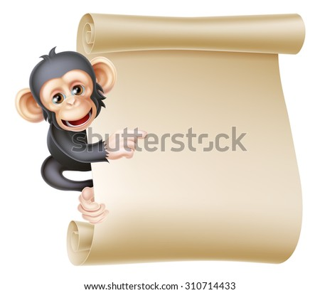 Cute cartoon chimp monkey like character mascot peeking around a scroll banner sign and pointing at it - stock photo