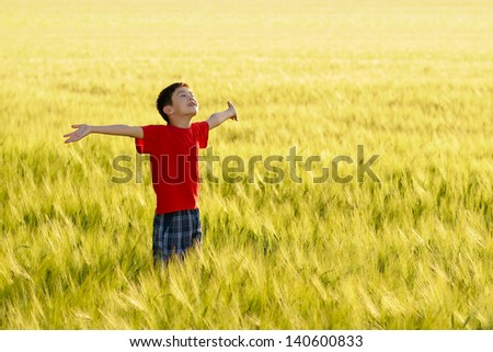 Cute child enjoying the sun on wheat field - stock photo
