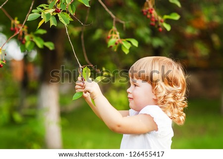 Cute child is trying to pick up the cherry from the tree - stock photo