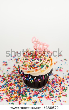 Cute Chocolate Birthday Cupcake with Rainbow Sprinkles and Pink Sign on White - stock photo