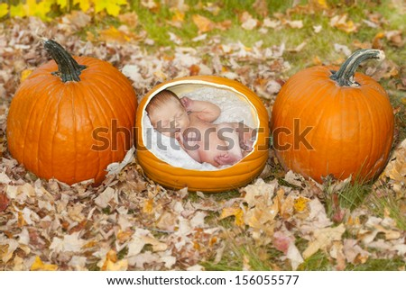 Cute concept image of a baby growing in a pumpkin patch in the fall. - stock photo