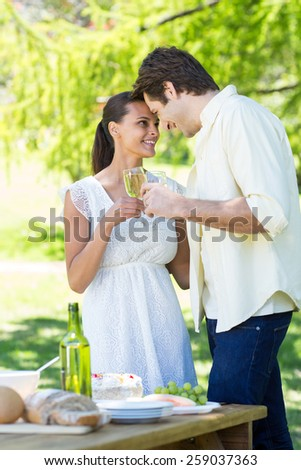 Cute couple toasting in the park on a sunny day - stock photo