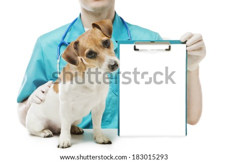 cute curious little dog sitting near veterinarian man who holds office clip blank sheet of paper for your ad Text information. White background. Mockup template for gift certificate. Studio shot - stock photo