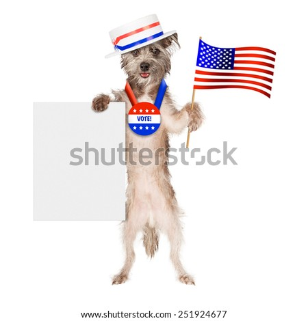 Cute dog wearing politician hat and vote button holding American flag and blank sign - stock photo