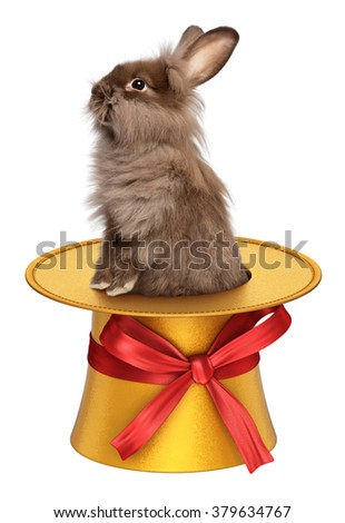Cute Easter bunny in a golden 3D decoration top hat with red ribbon, isolated on white - stock photo