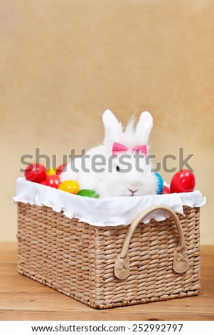 Cute easter bunny with colorful eggs sitting in a basket- shallow depth of field - stock photo