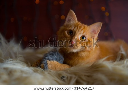 Cute Fluffy Red Kitten Playing with Toy Mouse - stock photo